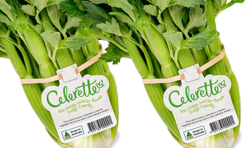 Celerette branding and packaging design